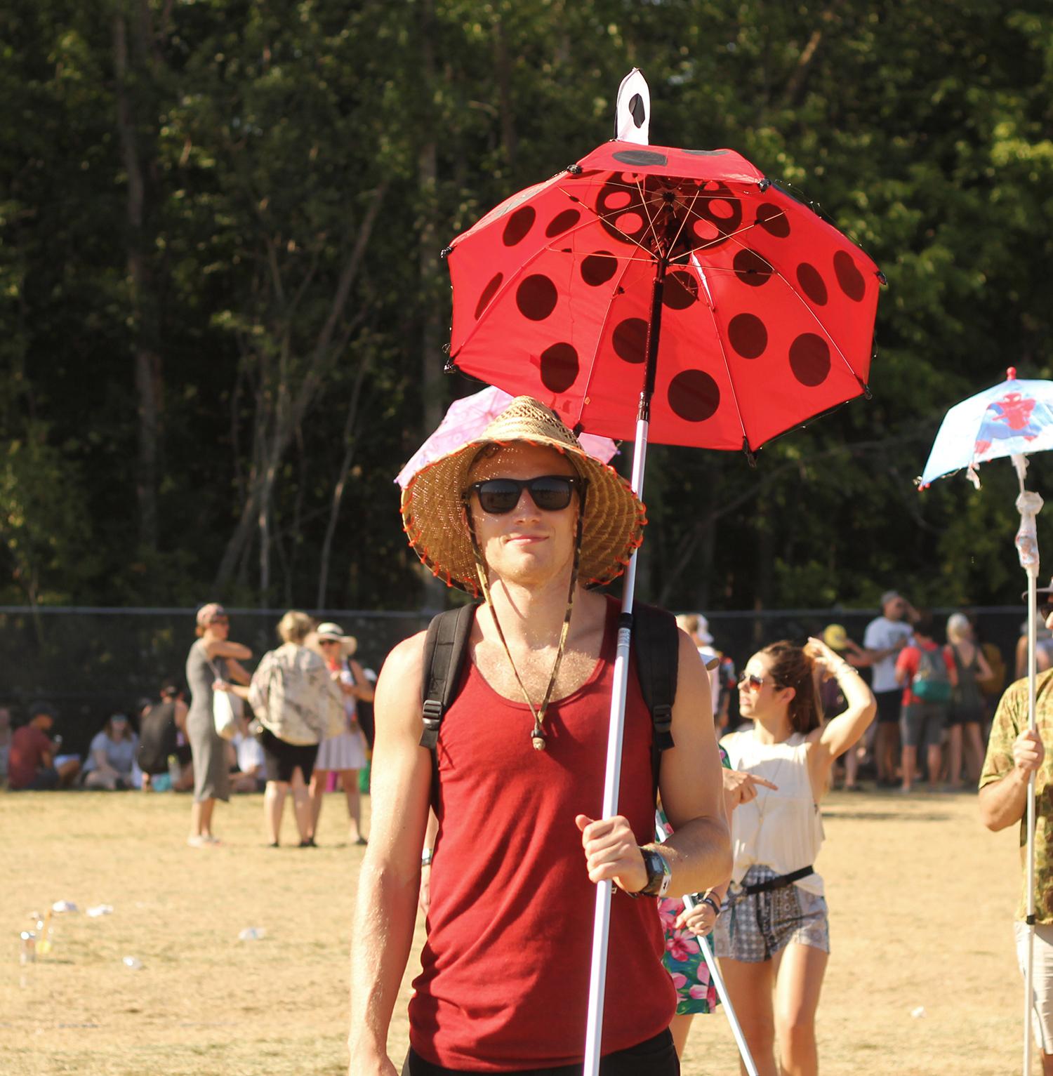 Ladybugumbrella